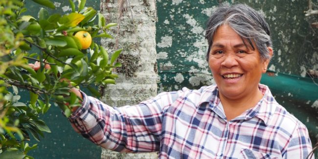 Woman smiling and picking fruit from a tree in her yard
