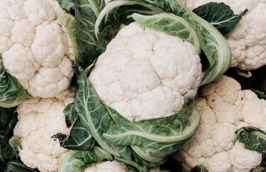 Closeup of many cauliflowers